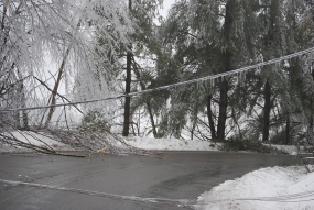 downed_power_line_snowy_road